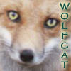 wolfcat userpic