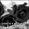 __reality__ userpic