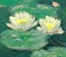 monetsflower userpic