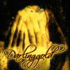 darlinggold