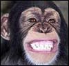 giant_monkey userpic