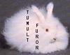 tumult_furor userpic