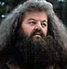 HP Hagrid (bbb)