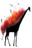 giraff_on_fire