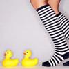 Kathy, resident duck lover.