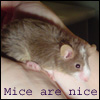 minty_mouse userpic