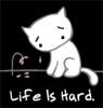 sad kitty - life is hard