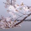bhink19 userpic