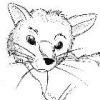 bear_cat userpic