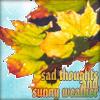 Tinny: __autumn