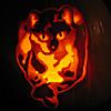 pumpkin moly