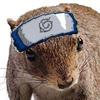 Sartan: nuts