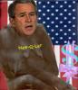 Gorilla Bush