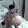 greydonkey userpic
