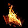 Beowabbit: Misc: BiCamp campfire