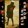 Only a Fleshwound //