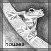 Houses (frog in pencil)