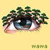 webwawa userpic