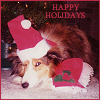 Jami: Happy Holidays from Chip.