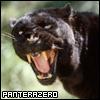panterazero userpic