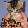 raqs: KittenShareYourValues
