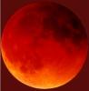 demon_moon userpic