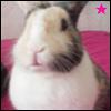 gurliestorm userpic