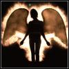 angel_anastasia userpic