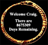 days remaining