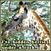 Evil Giraffe