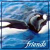 orca_lover32 userpic