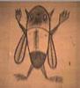sauri36 userpic