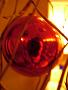 ianar userpic