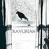 crow window