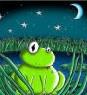 lilgreenfrog userpic
