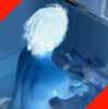 mmdot userpic