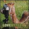 Squirrel Shutterbug