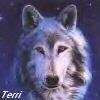 Terri: bluewolf