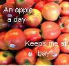 impetuousoddity userpic