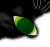cathowl userpic