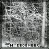 _mydecember_ userpic