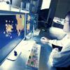 pimpbot2000 userpic