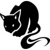 cat_jpg