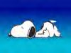 lilsnoopy userpic