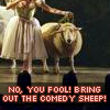 comedy sheep!