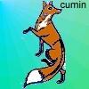 cumin userpic