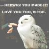 Alix (Tersa): HP - Hedwig (_kris_icons)