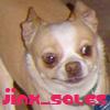 jinx_sales
