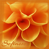 teplaya userpic