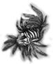 ribafugu userpic